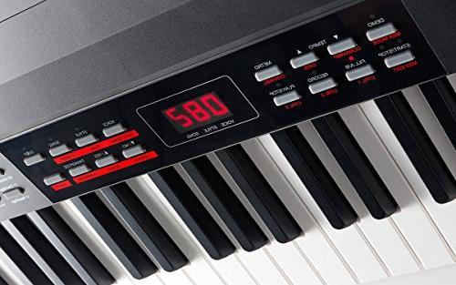 Alesis Pro Digital Piano Hammer-Action Keys